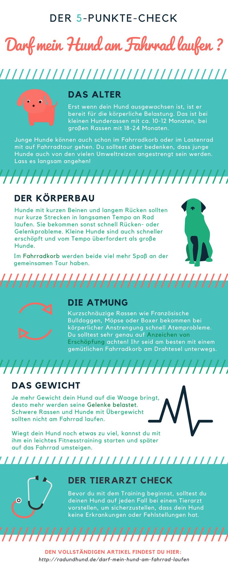 Infografik Darf mein Hund am Fahrrad laufen