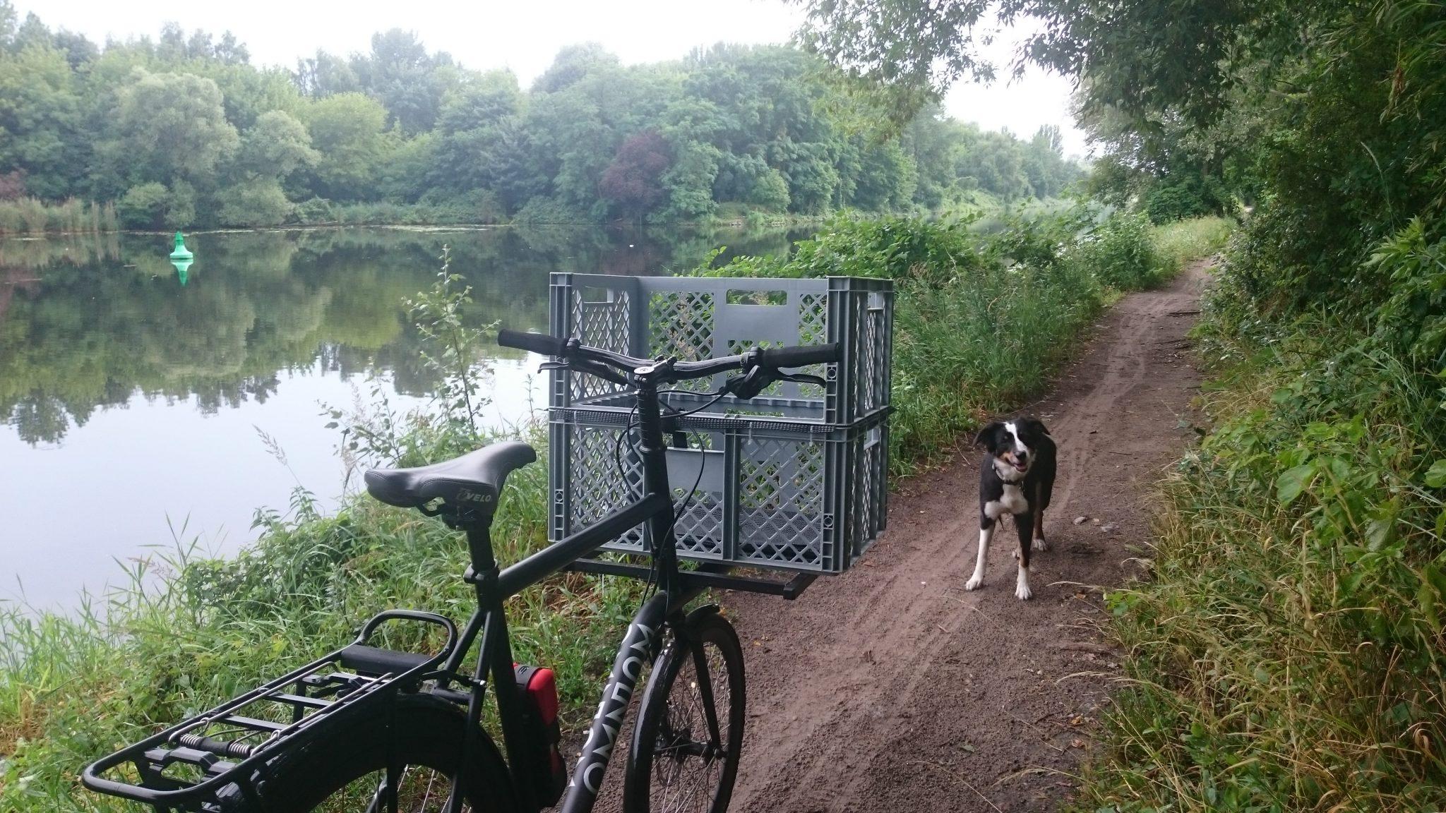 mehrtägige Fahrradtour mit Hund Fahrradfahren mit Hund