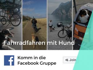 Fahrradfahren mit Hund Gruppe