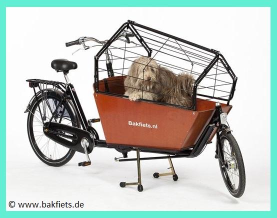 Bakfiets Hundetransport Gitterabdeckung