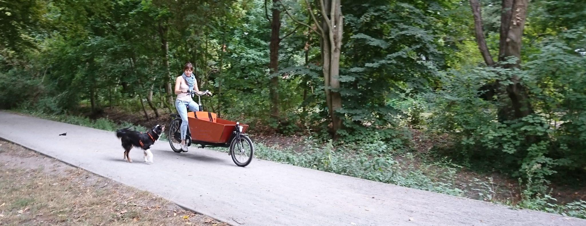 Bakfiets Lastenrad mit Hund auf dem Radweg