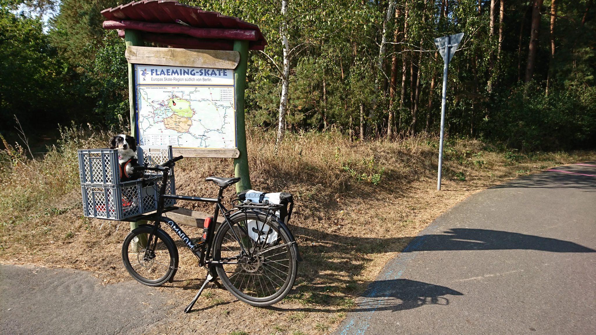 Fahrradtour FlaemingSkate Hund im Fahrradkorb vor Wegweiser