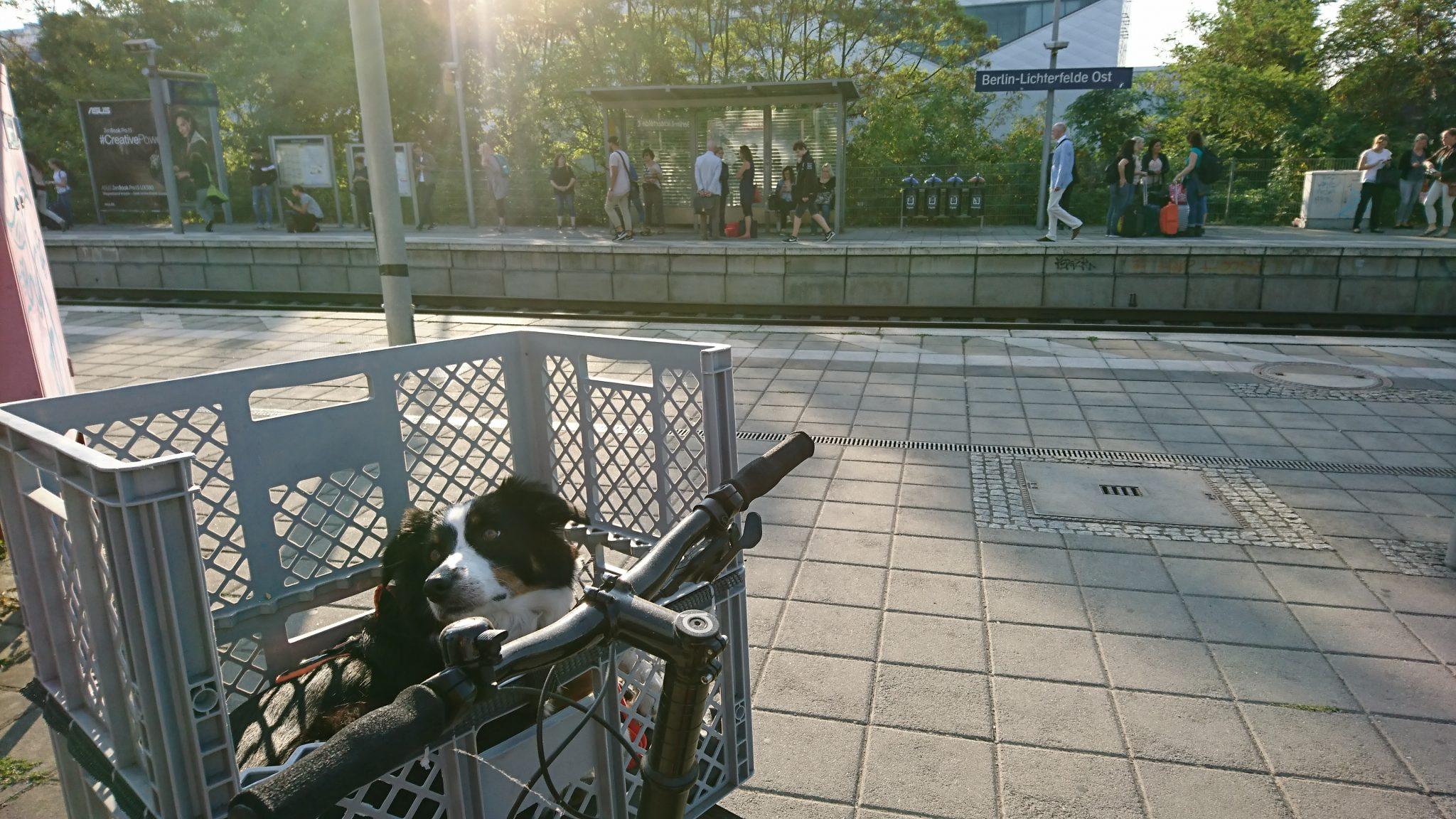Fahrradtour Flaeming Skate Start In Berlin am Bahnhof