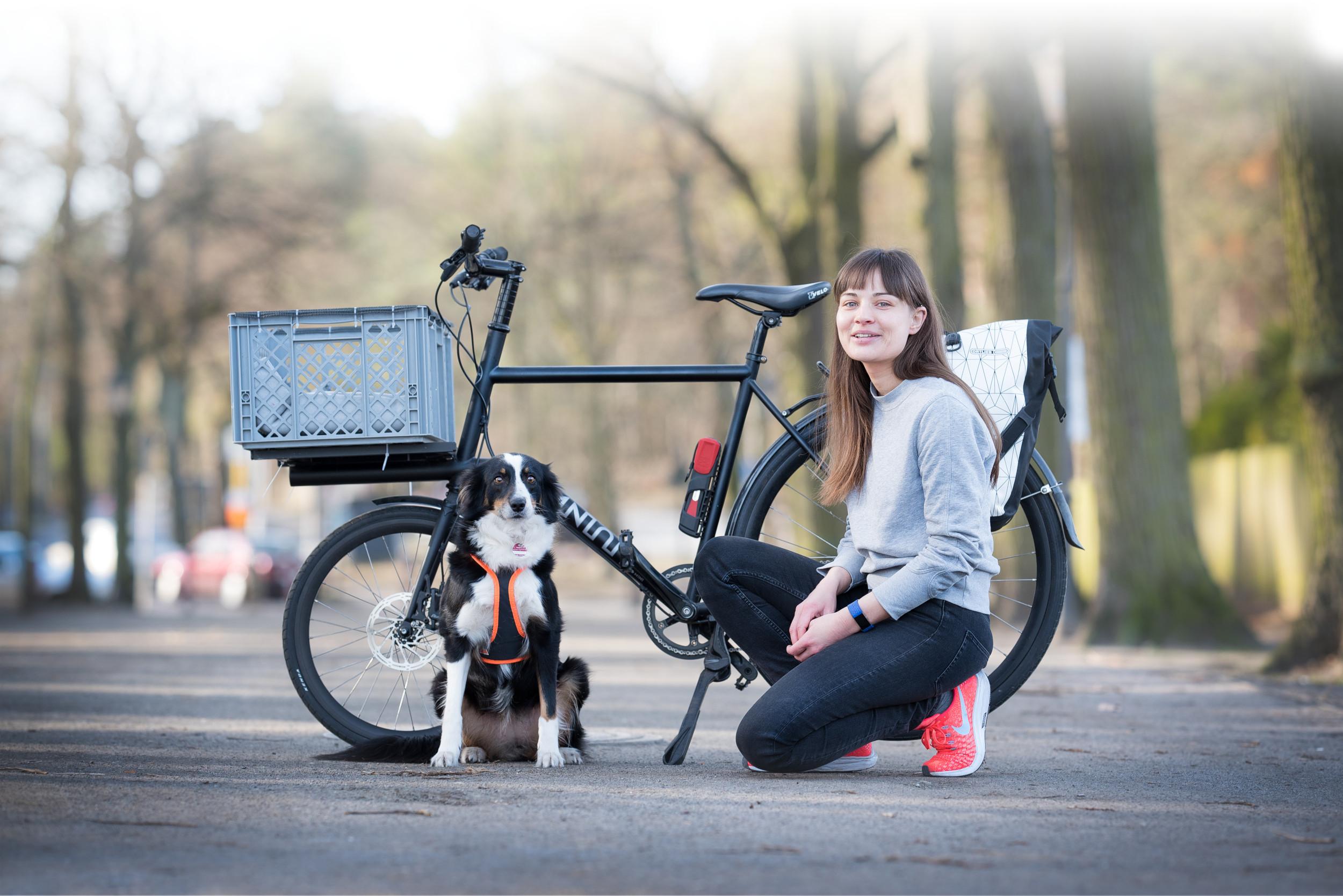 Fahrradfahren mit Hund Header