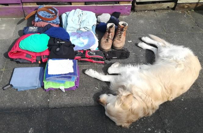 Packliste Fahrradtour mit Hund