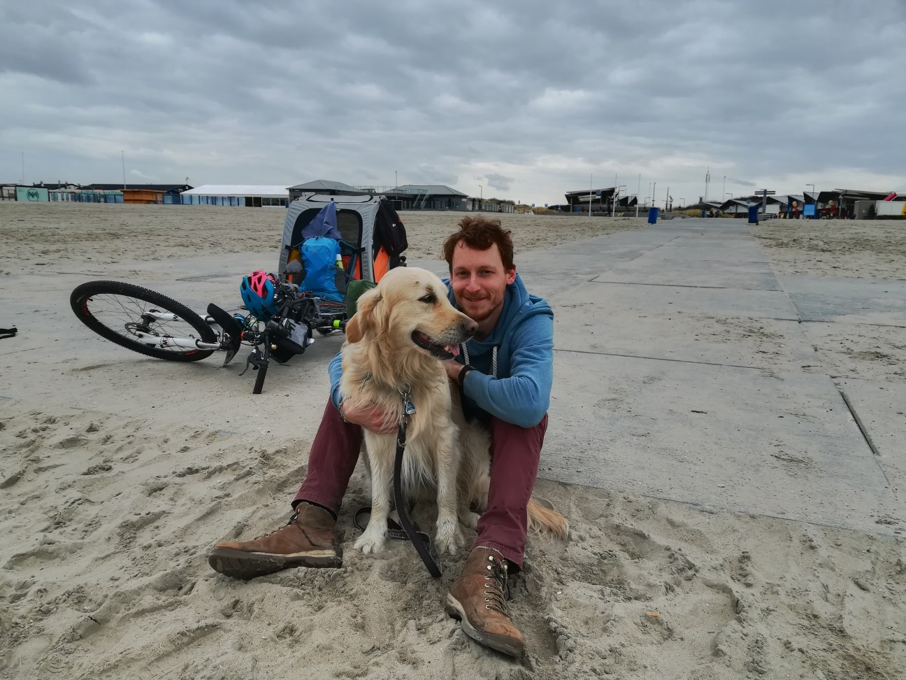 Golden Retriever Woody und Kai am Strand