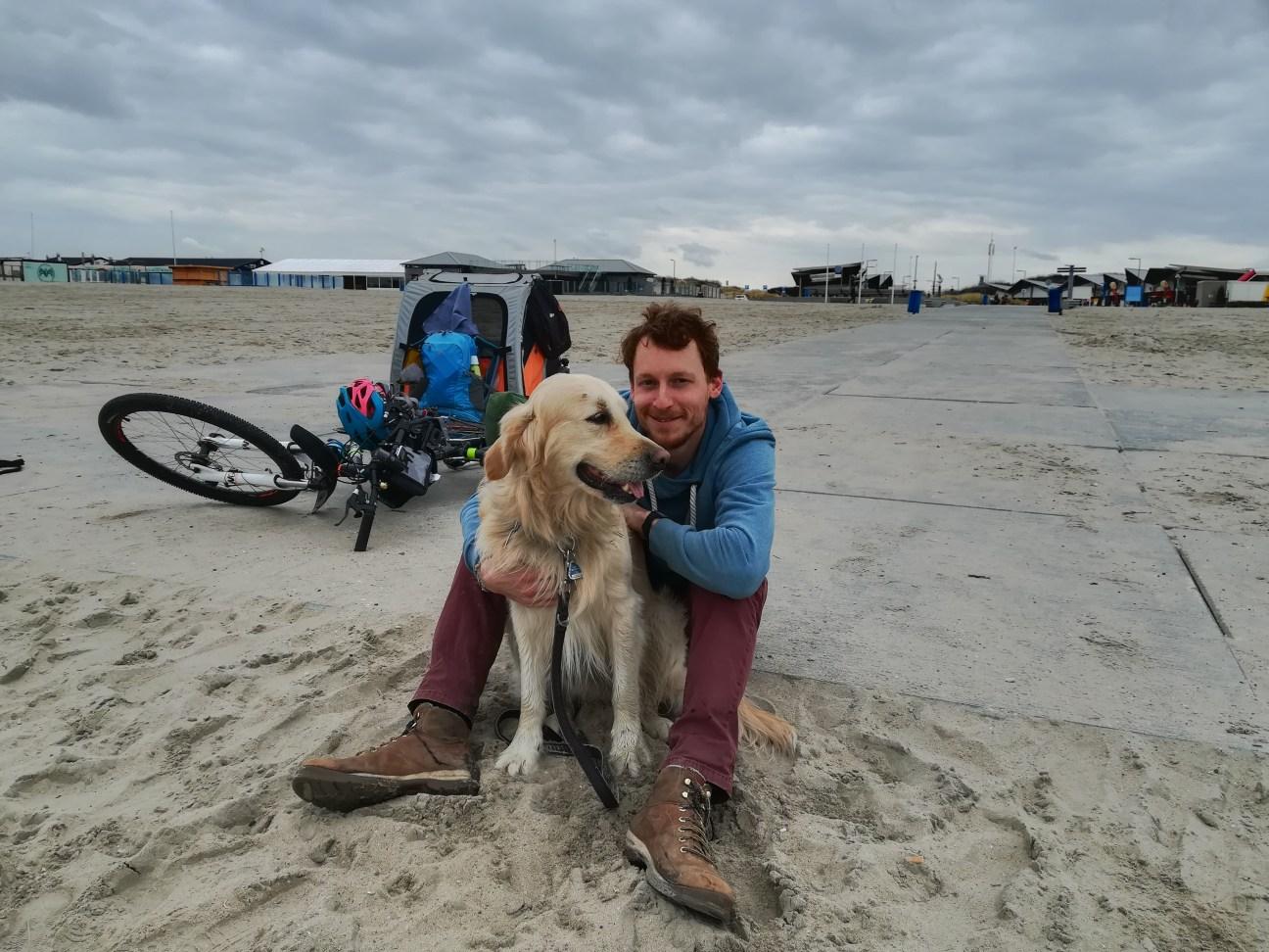 Golden Retriever Woody und Kai am Strand
