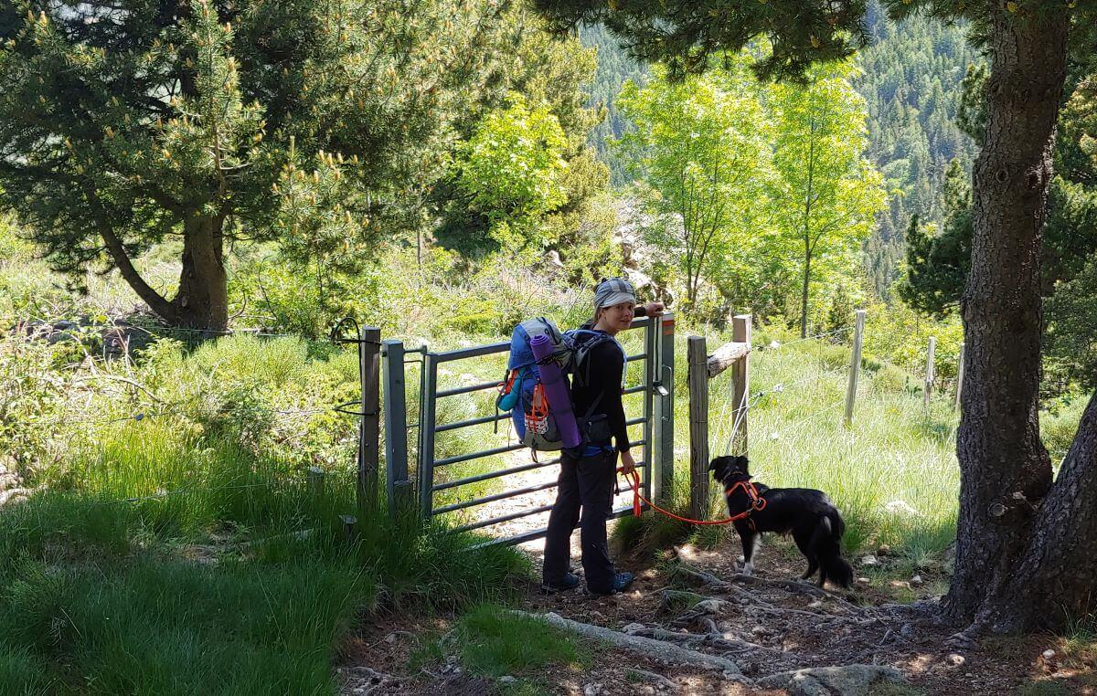 Wandern mit Hund auf dem GR10 durch ein Viehgatter